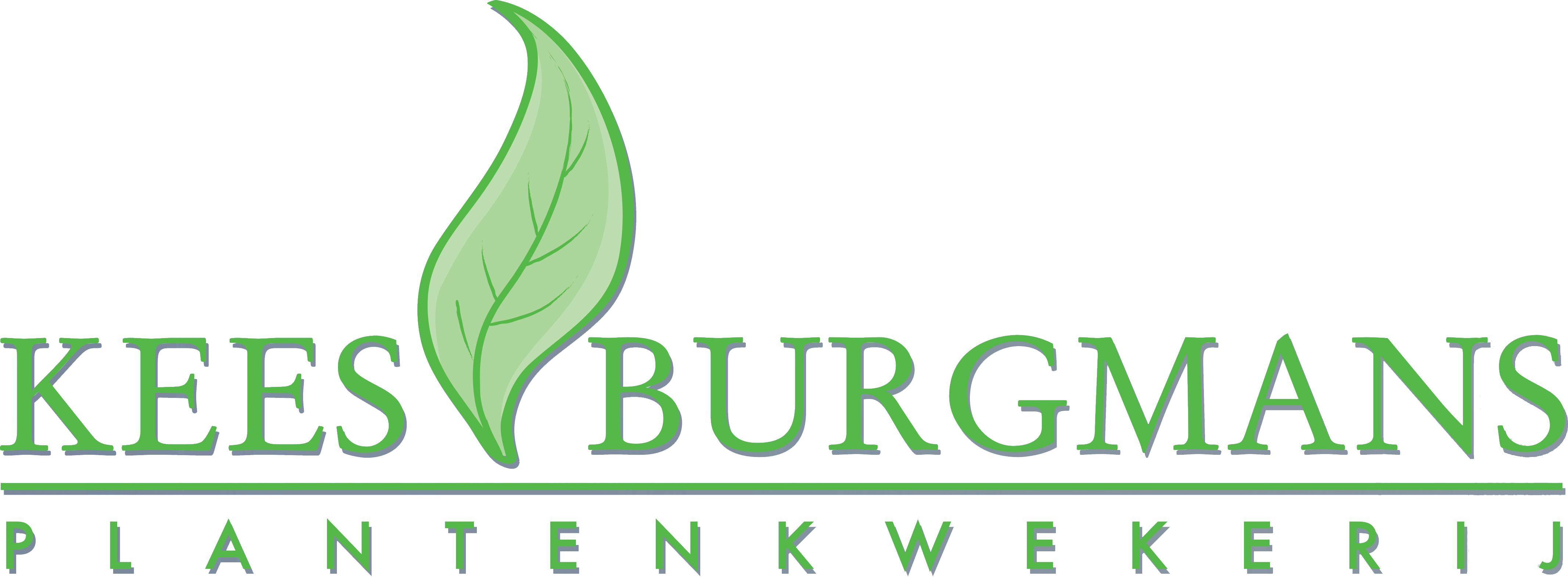 www.keesburgmans.nl